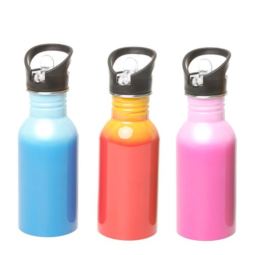 Stainless Steel Water Bottle with 2 color printing